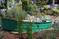 ogród letni, klomb z łódką, ozdobne rabaty, zdjęcia ogrodów, galeria ogrodowa, ogród ozdobny