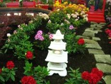 ogród japoński, rośliny do ogrodu w stylu japońskim, ogrodnik