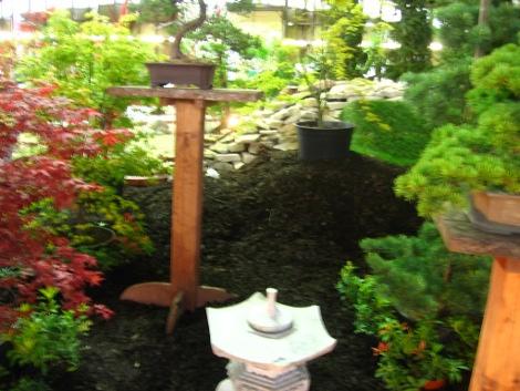 ogród japoński w ogrodzie Botanicznym w Łodzi , ogrody botaniczne, ogród botaniczny w Łodzi, urządzanie ogrodu, aranżacje z roślin, galeria ogrodowa