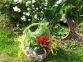 zioła w ogrodzie, warzywa, ogród użytkowy, aranżacje,  dekoracja w koszu, urządzanie ogrodu, aranżacje z roślin, galeria ogrodowa