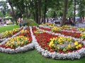 Paw Tolek Międzyzdroje rzeźba kwiatowa, ogrodnik-amator, kompozycje ogrodowe, rabata