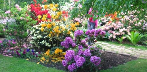 ogr�d , ro�liny do ogrodu maj w ogrodzie kalendarz ogrodnika, ogrodnik-amator.pl