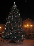 dekoracje świąteczne, glaeria świąteczna, iglaki na choinke bożonarodzeniową, dodatki ogrodowe,  galeria ogrodowa