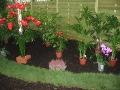 ogrodnik - rośliny rośliny doniczkowe SZKODNIKI