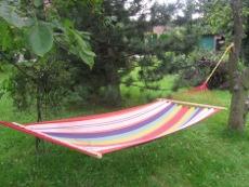 lipiec w ogrodzie, zabiegi przeprowadzane w lipcu, wysiew nasion w lipcu, cięcie drzew i krzewów, rośliny pielęgnacja w miesiącu lipcu, lipcowy ogród, wypoczynek w ogrodzie, ogrodnik