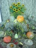 dodatki ogrodowe, jesienne dekoracje, aranżacja z dyni i kwiatów, ozdoby ogrodowe, galeria ogrodowa