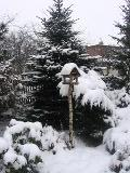 dodatki ogrodowe, zimowy ogród, karmnik, osniezony ogród, galeria ogrodowa