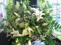 mowa kwiatów, symbolika kwiatóws, co oznaczają, ogrodnik-amator kwiaty cięte, bukiety, rośliny na wiązanki, dekoracje florystyczne