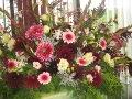ogrodnik - kwiaty cięte, bukiety, rośliny na wiązanki, dekoracje florystyczne