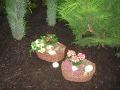 kosze z wrzosami i hortensjami, ozdobne aranżacje, zdjęcia ogrodowe, galeria ogrodowa, kwitnące krzewy letni o jesienne
