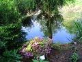 ogrodnik -  balkony, rośliny na balkony, urządzanie tarasu