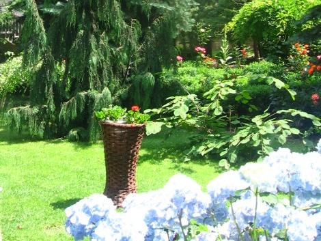 letni ogród, ogrodnik, ogród, lato w ogrodzie, letnie kwiaty, letnie rośliny, ogród latem, kalendarz ogrodnika