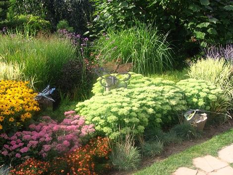 rozchodnik okazały, aranżacj z rozchodnikami okazałymi, byliny kwiaty, galeria ogrodowa