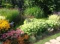 sierpień w ogrodzie, zabiegi przeprowadzane w sierpniu, rozmnażanie roślin w sierpniu, cięcie drzew,  cięcie krzewów, cięcie żywopłotów, rośliny pielęgnacja w miesiącu sierpniu, sierpniowy ogród, wypoczynek w ogrodzie, ogrodnik, lato w ogrodzie, zdjęcia ogrodów,  dodatki ogrodowe,  rośliny ozdobne, aranżacje, ogród ozdobny, urządzanie ogrodu, aranżacje z roślin, galeria ogrodowa