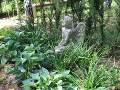 rabata bylinowa w ogrodzie, rośliny do cienia, cieniste zakątki, liście ozdobne, ogród ozdobny, aranżacje,  dekoracje , urządzanie ogrodu, aranżacje z roślin, galeria ogrodowa
