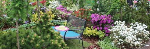 Ogrody, targi, wystawy ogrodnicze