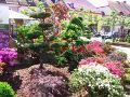 ogród w stylu japońskim, formowane, ozdobne rabaty, zdjęcia ogrodów, galeria ogrodowa, ogród ozdobny