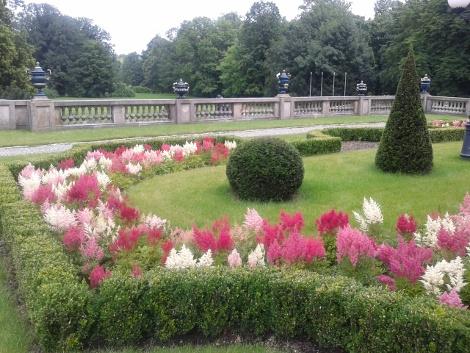 ogrodnik, uprawa ogrodu, porady ogrodnicze, galeria ogrodowa
