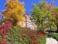 zdjęcia ogrodów, kolorowa jesień, kolorowe liście, winobluszcze,kasztanowce, parki i ogrody, galeria ogrodowa