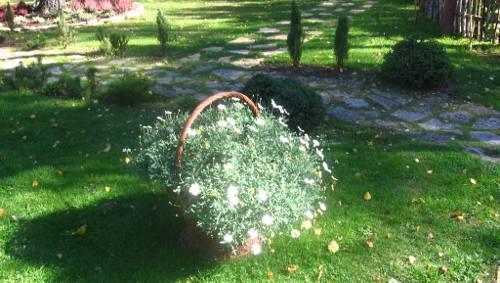 ogr�d , ro�liny do ogrodu wrzesie� w ogrodzie kalendarz ogrodnika, ogrodnik-amator.pl