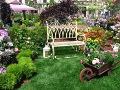 rośliny, wystawy ogrodnicze,  rośliny do ogrodu, dodatki ogrodowe, miejsce do siedzenia, kwietniki, zdjęcia, galeria ogrodowa,  zdjęcia ogrodów, ogród ozdobny