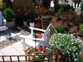 wystawy ogrodnicze, miejsce do siedzenia w ogrodzie, zdjęcia ogrodów,  balkony, tarasy, dodatki ogrodowe,  rośliny ozdobne, aranżacje, ogród, urządzanie ogrodu, aranżacje z roślin, galeria ogrodowa