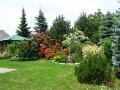 zdjęcia ogrodów, dodatki ogrodowe, oczko wodne, miejsce do siedzenia w ogrodzie, galeria ogrodowa