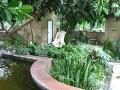 ogroód zimowy, oranżeria,  zima w ogrodzie, dodatki ogrodowe, urządzanie  ogrodu , zdjęcia ogrodów, dodatki  ogrodowe, galeria ogrodowa, ogród ozdobny