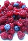 ogrodnik - owoce jagodowe