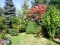dodatki ogrodowe, urządzanie  ogrodu , zdjęcia ogrodów,  drzewa i krzewy w ogrodzie, nasadzenia ogorodowe, dodatki  ogrodowe, galeria ogrodowa, ogród ozdobny