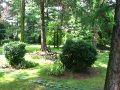 ogród ozdobny,prawo i ogród, wycinka drzew i krzewów