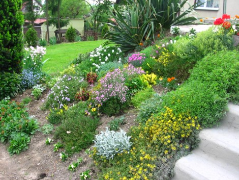 rabata bylinowa, zakładanie rabaty bylinowej, byliny, rośliny wieloletnie, kwiaty wieloletnie
