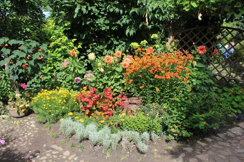 ogród angielski, ogrody ogrody , rabata mieszana, urządzanie ogrodu, aranżacje z roślin, galeria ogrodowa