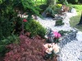 wystawa Park ślaski, drzewa i krzewy, kruszywo ogrodowe, rośliny ozdobne, aranżacje, ogród, urządzanie ogrodu, aranżacje z roślin, galeria ogrodowa