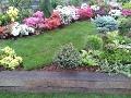 krzewy i drzewa do małego ogrodu,  ogrodnik-amator, kompozycje ogrodowe, aranżacje ogrodowe, rabaty