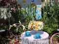 romantyczny stolik z kwiatami, kwiaty w ogrodzie, warzywa, ogród ozdobny, aranżacje,  dekoracje , urządzanie ogrodu, aranżacje z roślin, galeria ogrodowa
