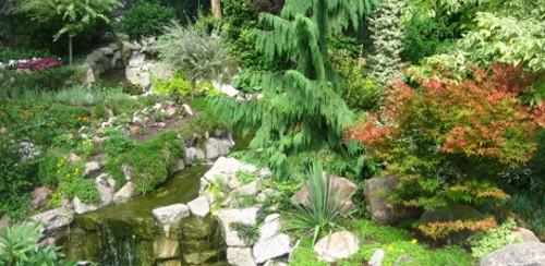 ogród , rośliny do ogrodu, style ogrodowe, ogród ogród skalny, alpinarium, skalniak ogrodnik-amator.pl