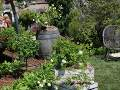 ogród ogód wielski, wystawy ogrodnicze, ozdobne rabaty, zdjęcia ogrodów, galeria ogrodowa, ogród ozdobny