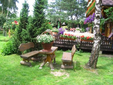 brzoza brodawkowata, aranżacje z brzozą, drzewo, ciała kora, galeria ogrodowa