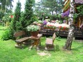 miejsce do siedzenia, ukwiecony taras, dodatki ogrodowe,  rośliny ozdobne, aranżacje, ogród, urządzanie ogrodu, aranżacje z roślin, galeria ogrodowa
