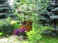 zdjęcia ogrodów, dodatki ogrodowe, zieleń w ogrodzie, galeria ogrodowa, studnia ogrodowa, pomysły na ogród