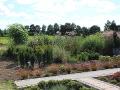 trawy odobne, ogród traw, aranżacje ogrodowa, galeria ogrodowa