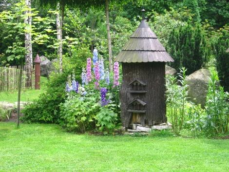 ostróżka ogrodowa, aranacje z ostróżką ogrodową, bylina niebieskie kwiaty, galeria ogrodowa, ostróżki ogrodowe