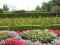 żywopłoty, bukszpany, żywopłot z bukszpanu, kwiaty letnie, dodatki ogrodowe,  galeria ogrodowa