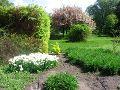 wiosna w ogrodzie, wiosenny ogród, wystawy ogrodnicze, orchidee,  rośliny ozdobne, aranżacje, ogród ozdobny, urządzanie ogrodu, aranżacje z roślin, galeria ogrodowa