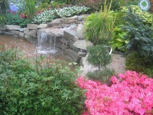 wystawy ogrodnicze