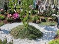 zielona wyspa, żwitkowa ścieżka,  galeria ogrodowa