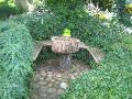 zarośnięte bluszczem, pnącza ogrodowe, zdjęcia ogrodów, galeria ogrodowa