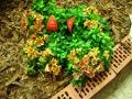 Ogrodnik-amator, opis rośliny, Alstremeria, lilia Inków,. Alstroemeria,  Peruvian Lily,  Lily of the Incas, uprawa alstremerii, uprawa alstroemerii, opis rośliny,  kwiaty wieloletnie, rośliny kłączowe, kwiaty trudniejsze w uprawie, kwiaty na balkony i tarasy, kwiaty cięte, rośliny kwitnące latem