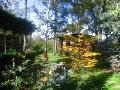 ozdobne ogrody, iglaki w ogrodzie, ogród jesienią, zdjęcia ogrodów, galeria ogrodowa